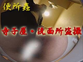 無料アダルト動画:寺子屋・洗面所盗SATU:おまんこパイパン