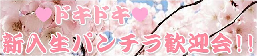無料アダルト動画:ドキドキ❤新入生パンチラ歓迎会:無毛おまんこ