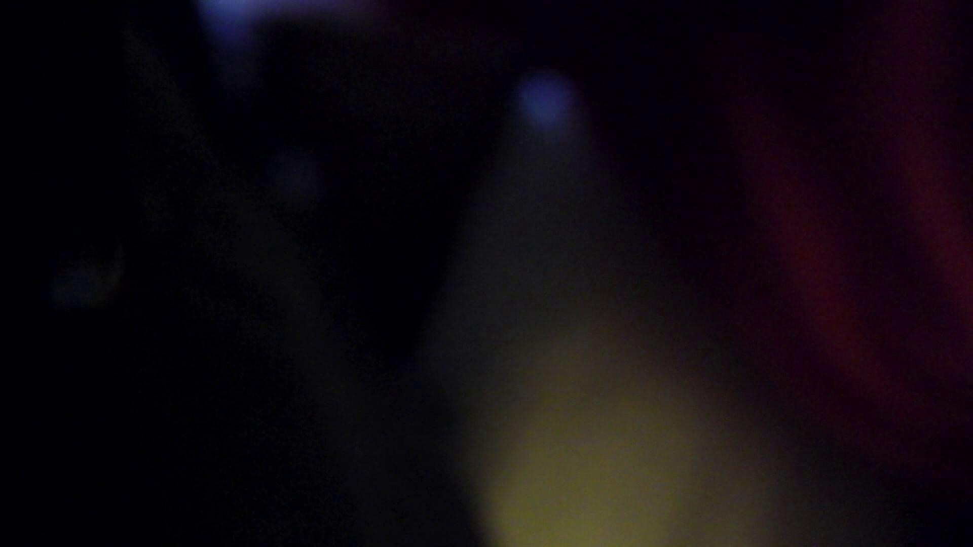無料アダルト動画:ヒトニアラヅNo.02 姿と全体の流れを公開:怪盗ジョーカー