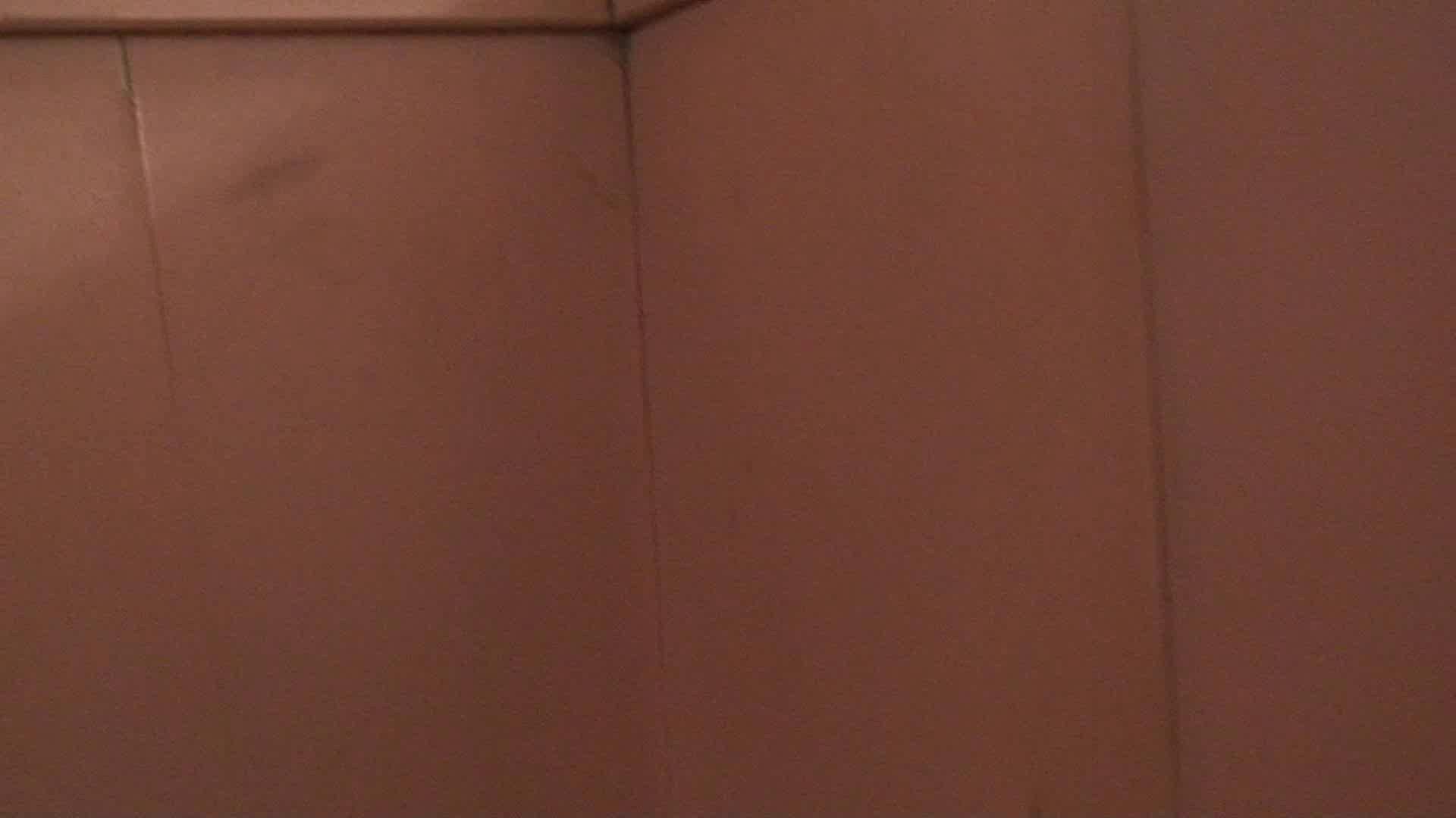無料アダルト動画:洗面所内潜入!同級生が同級生を盗撮! vol.02:怪盗ジョーカー