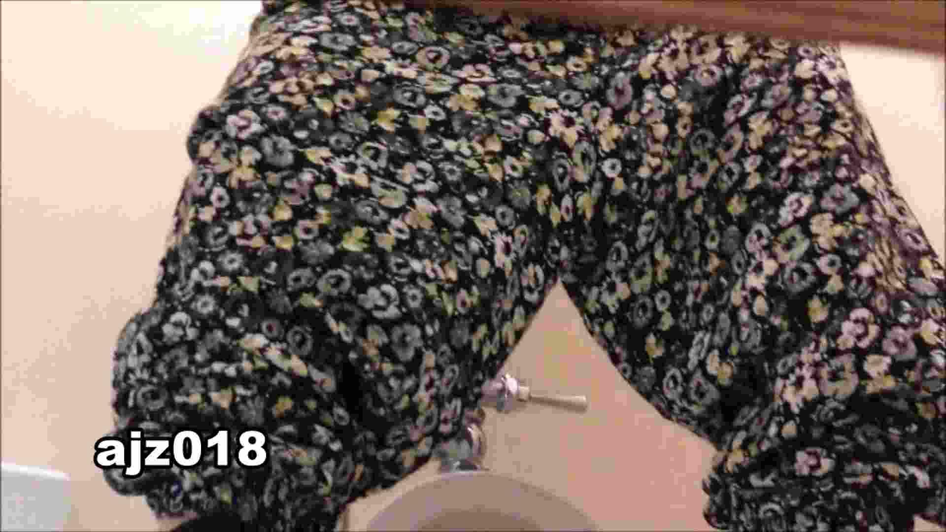 某有名大学女性洗面所 vol.18 和式 | 洗面所  50連発 25