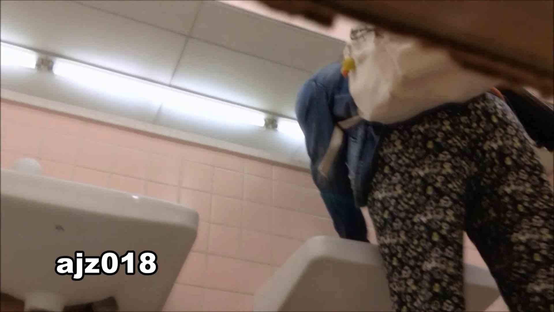 某有名大学女性洗面所 vol.18 OLのエロ生活 おまんこ無修正動画無料 50連発 26