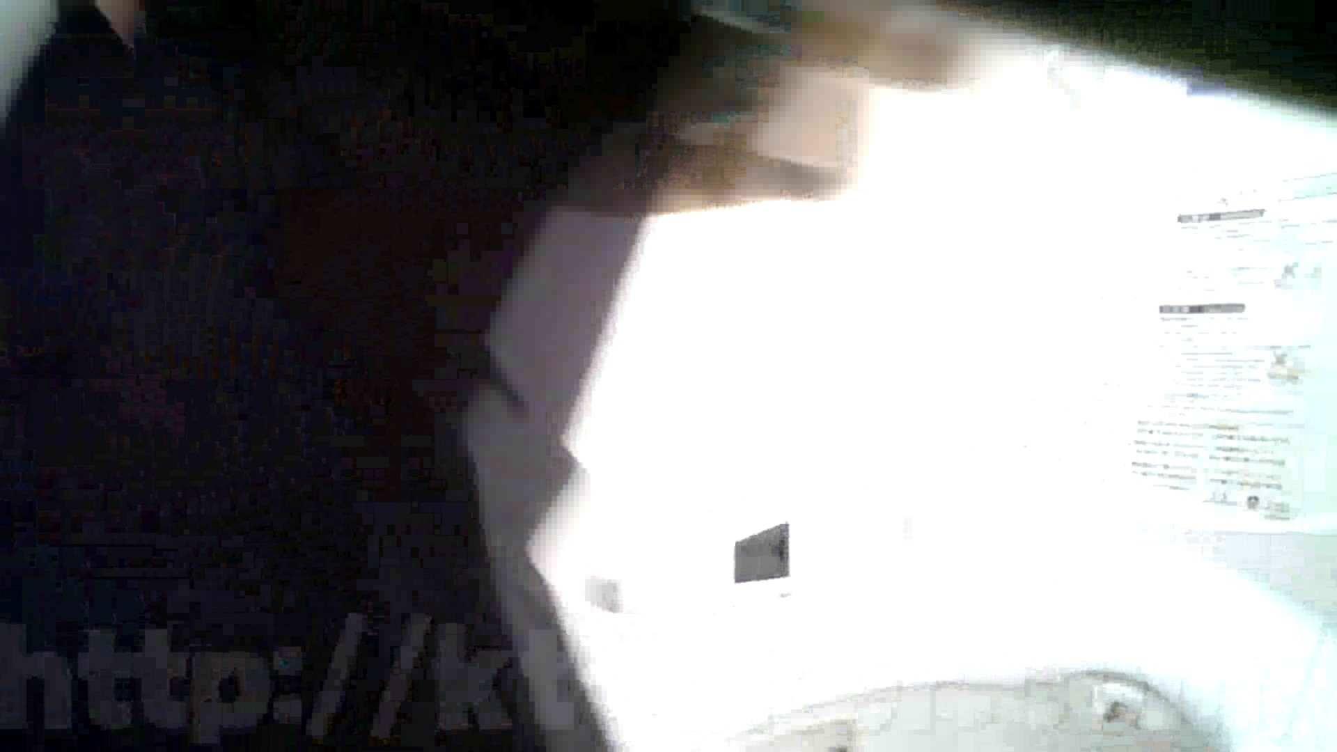 某有名大学女性洗面所 vol.32 OLのエロ生活 オメコ動画キャプチャ 103連発 67