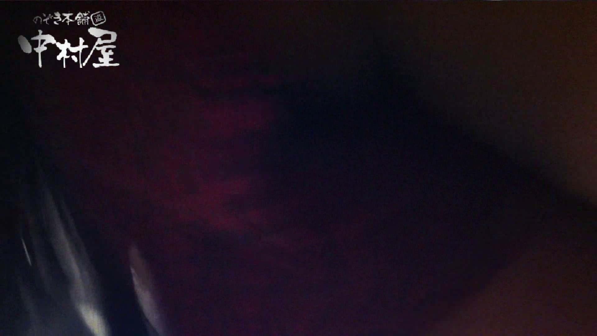 vol.48可愛いカリスマ店員胸チラ&パンチラ アニメ声の店員さん パンチラ SEX無修正画像 96連発 78