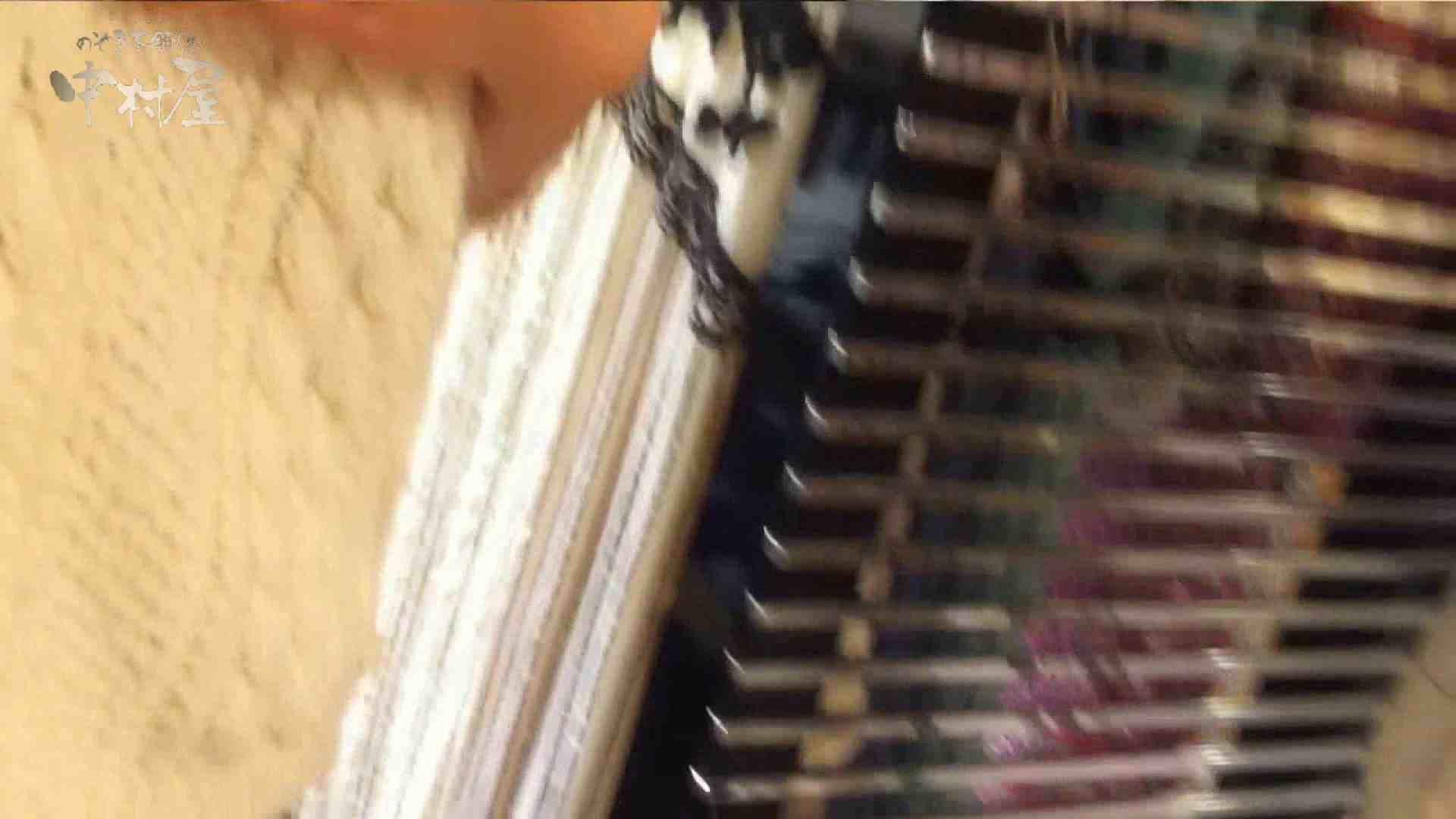vol.73 美人アパレル胸チラ&パンチラ 目の下のホクロがエッチな店員さん OLのエロ生活 おまんこ動画流出 95連発 44