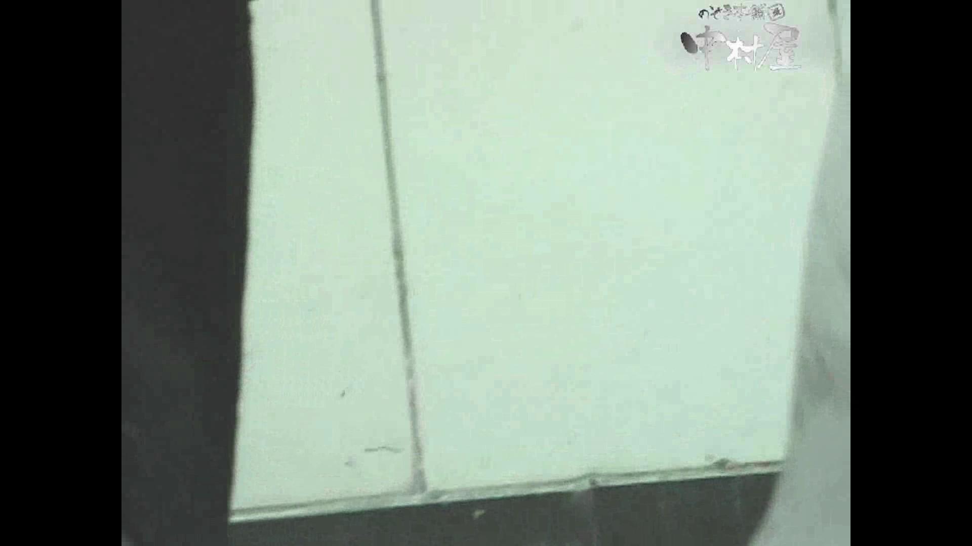 岩手県在住盗撮師盗撮記録vol.42 厠 隠し撮りオマンコ動画紹介 66連発 43