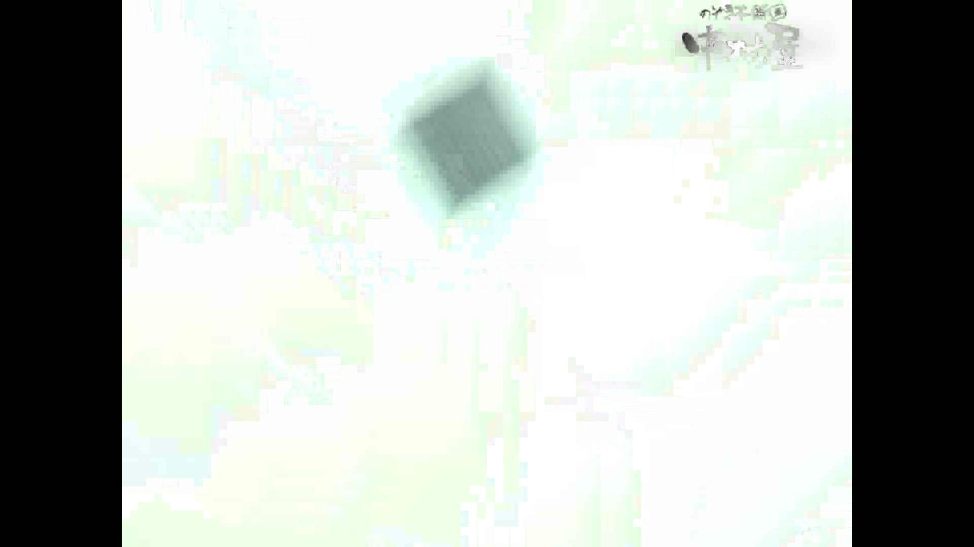 岩手県在住盗撮師盗撮記録vol.44 厠 スケベ動画紹介 109連発 88