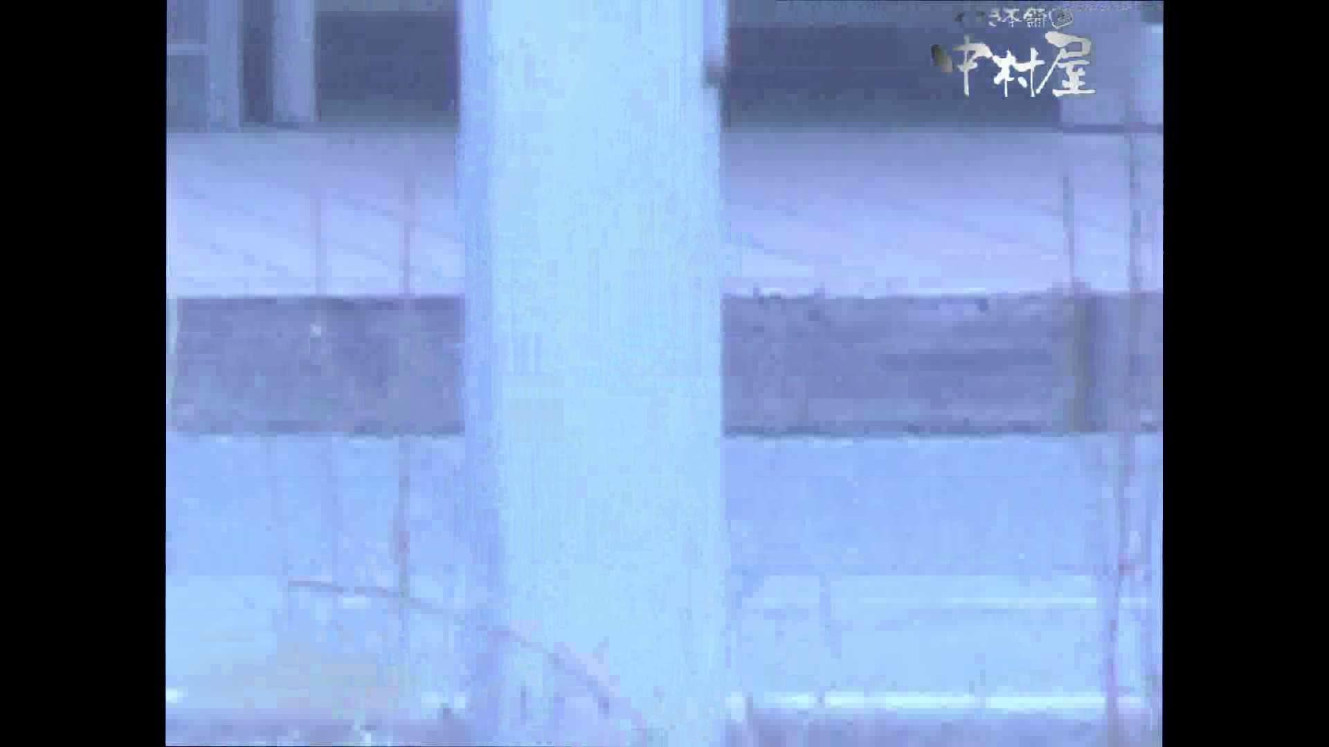 岩手県在住盗撮師盗撮記録vol.44 OLのエロ生活 おめこ無修正画像 109連発 102