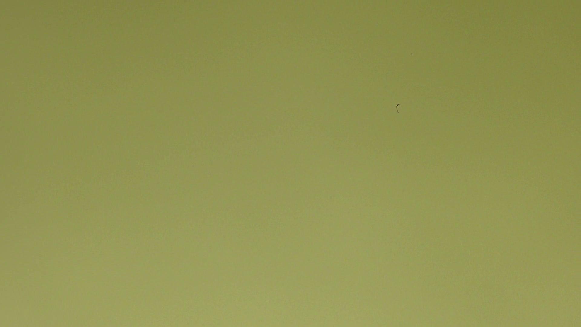 上級者の方専用 vol.03 OLのエロ生活  68連発 16