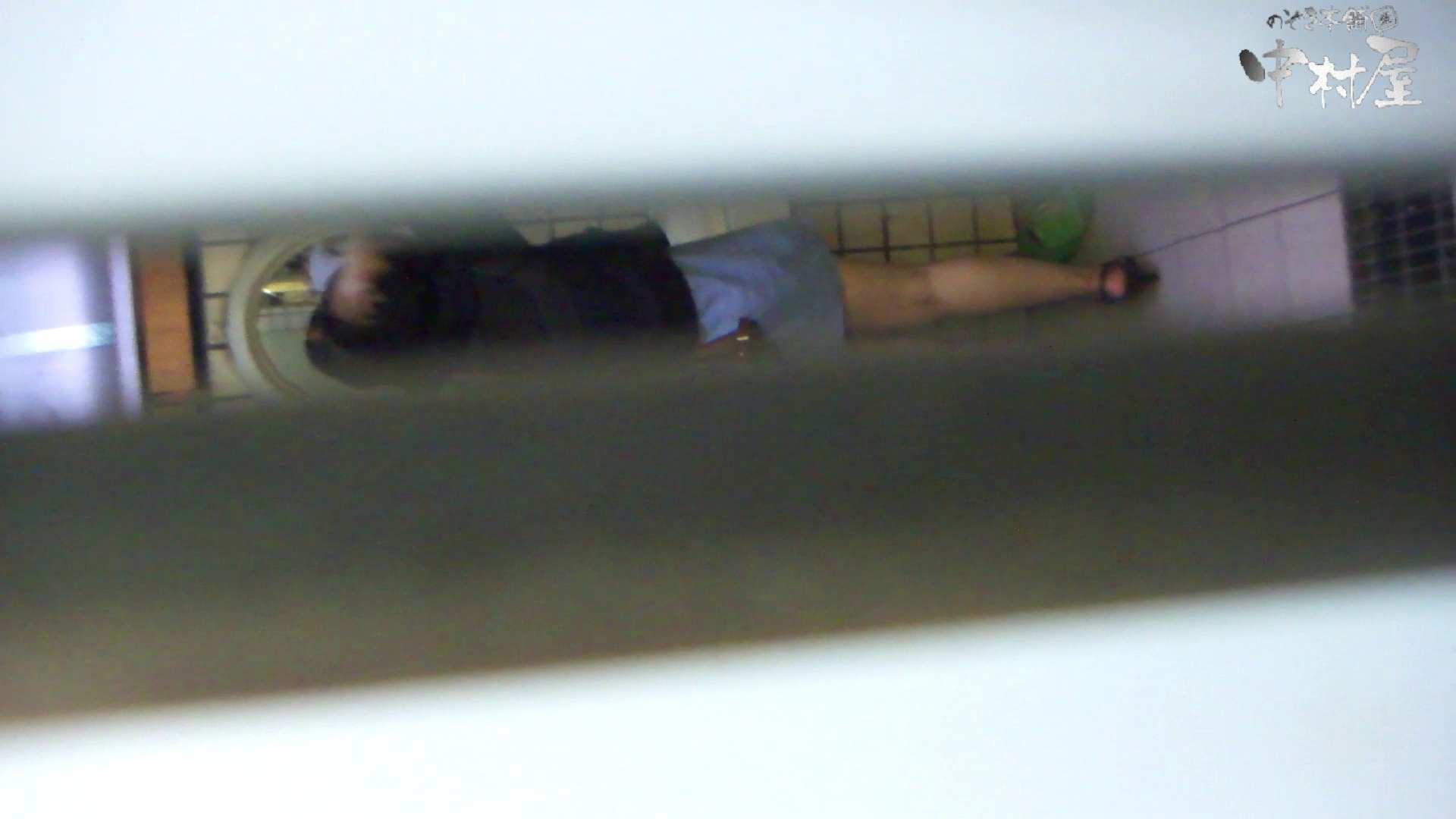 【美人が集まるファッションショッピングセンター洗面所盗SATU】ギャルのツルピカ潜入盗satu!Vol.10 潜入 性交動画流出 88連発 33