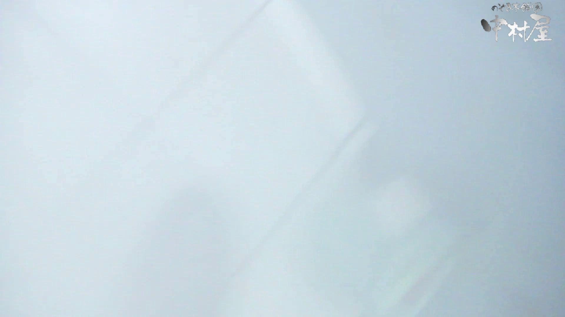 【美人が集まるファッションショッピングセンター洗面所盗SATU】ギャルのツルピカ潜入盗satu!Vol.10 高画質 エロ画像 88連発 34
