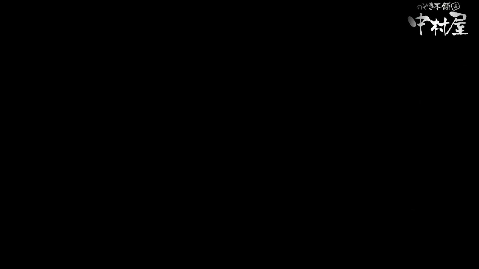 【美人が集まるファッションショッピングセンター洗面所盗SATU】ギャルのツルピカ潜入盗satu!Vol.10 潜入 性交動画流出 88連発 58