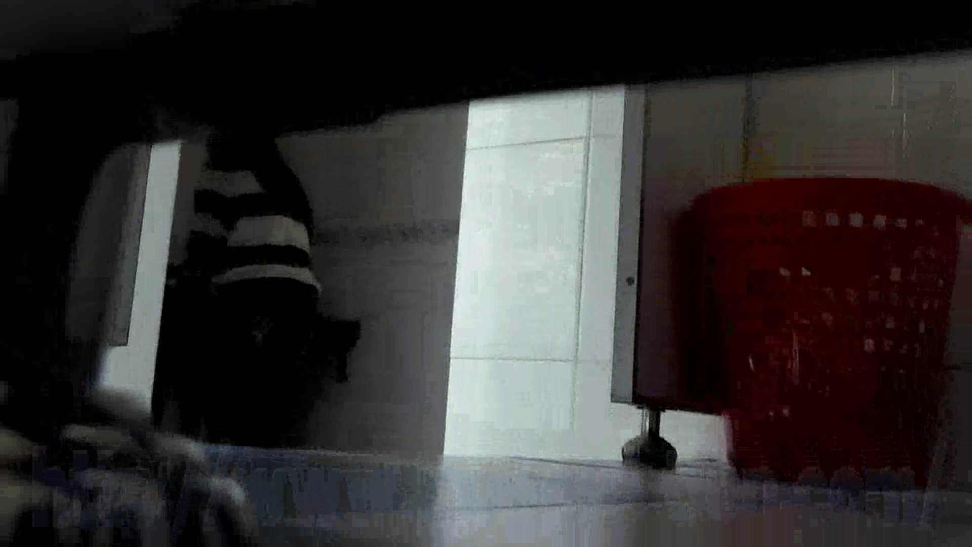 なんだこれVol.12 美魔女登場、 HD万歳!! 違いが判る映像美!! 潜入  69連発 14