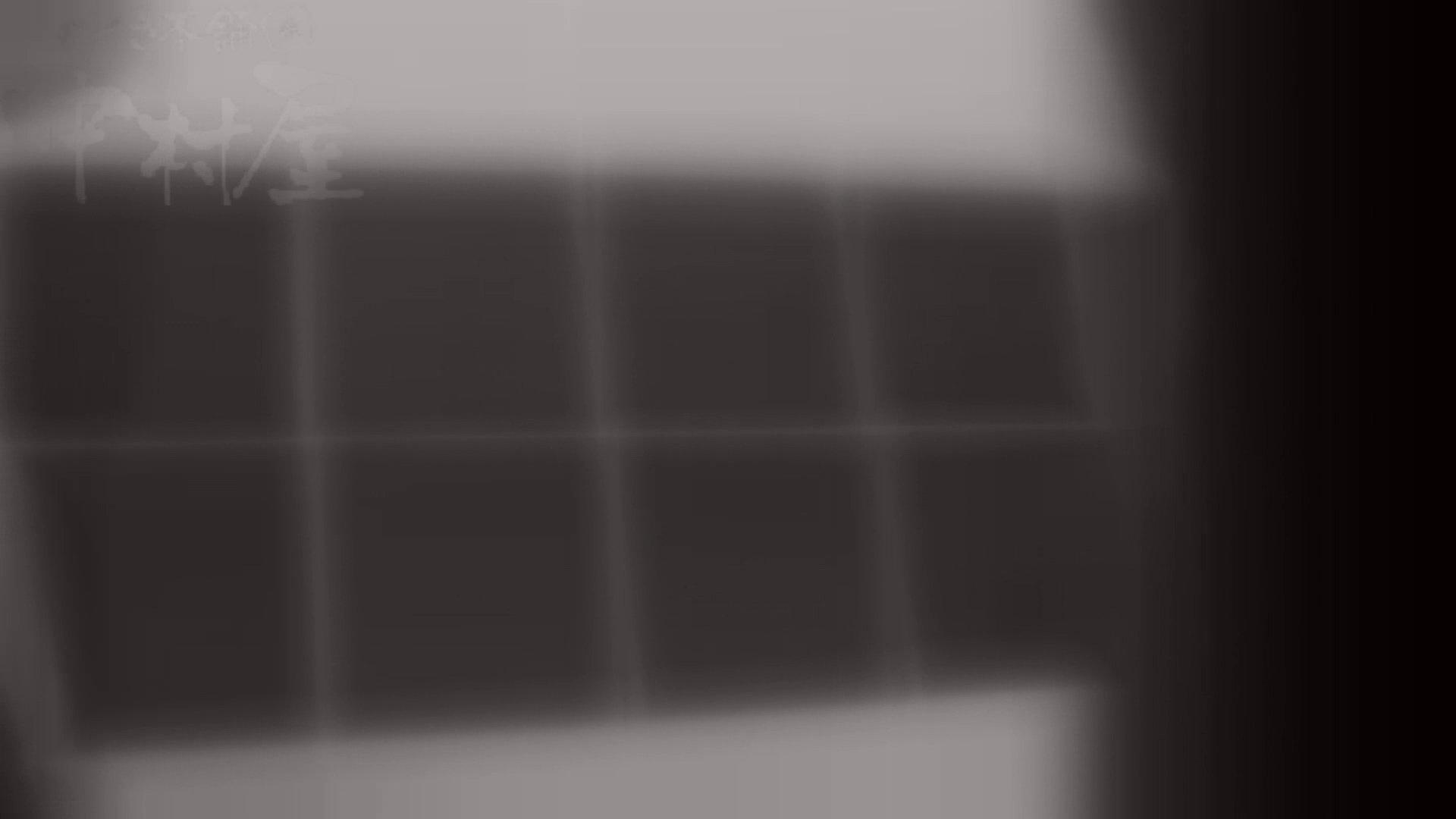 マンコ丸見え!第三体育館潜入撮File001 排泄 性交動画流出 104連発 64