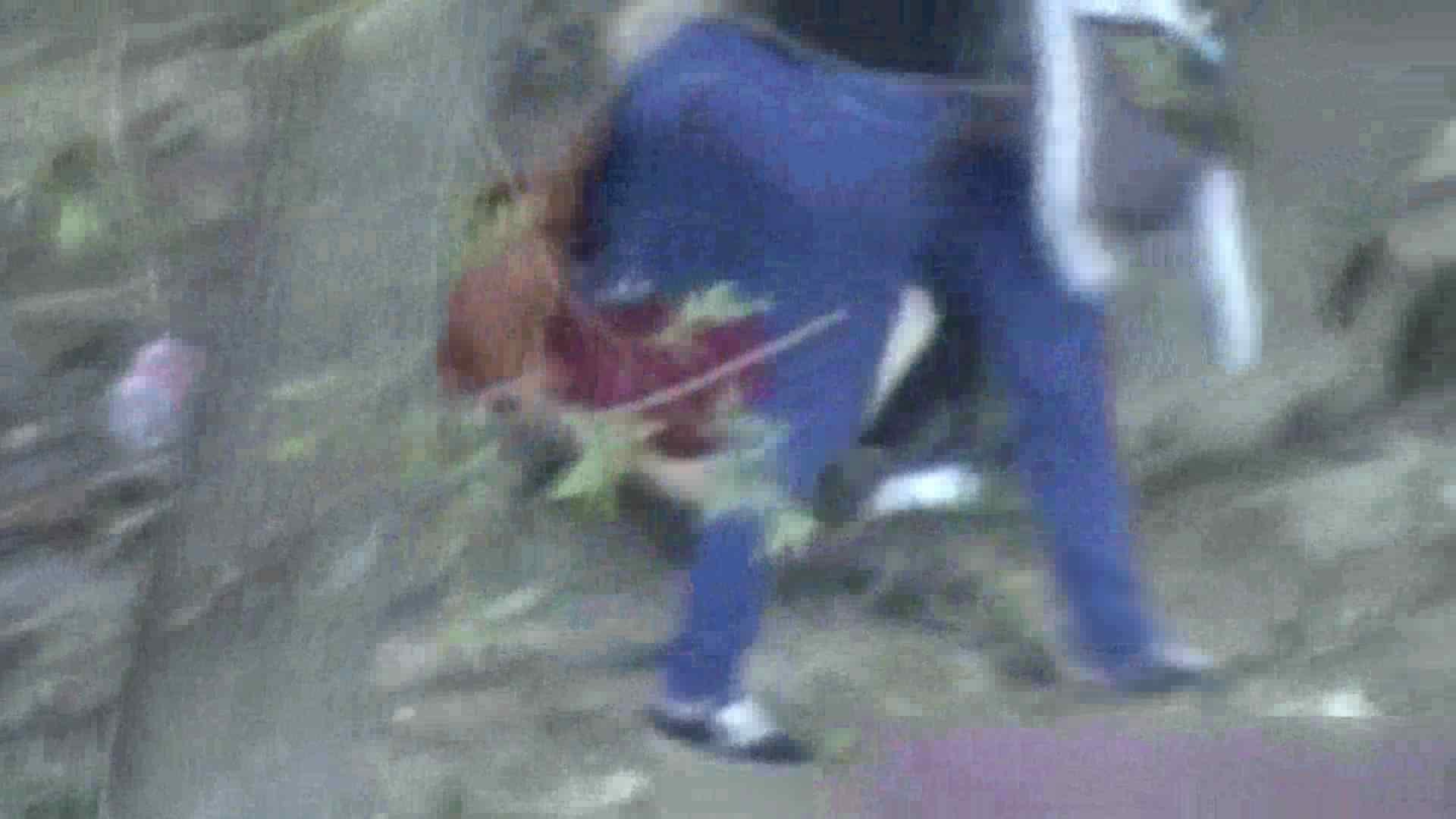 ハプニングッド!妖精達のオシッコ Vol.02 ハプニング 隠し撮りオマンコ動画紹介 73連発 71
