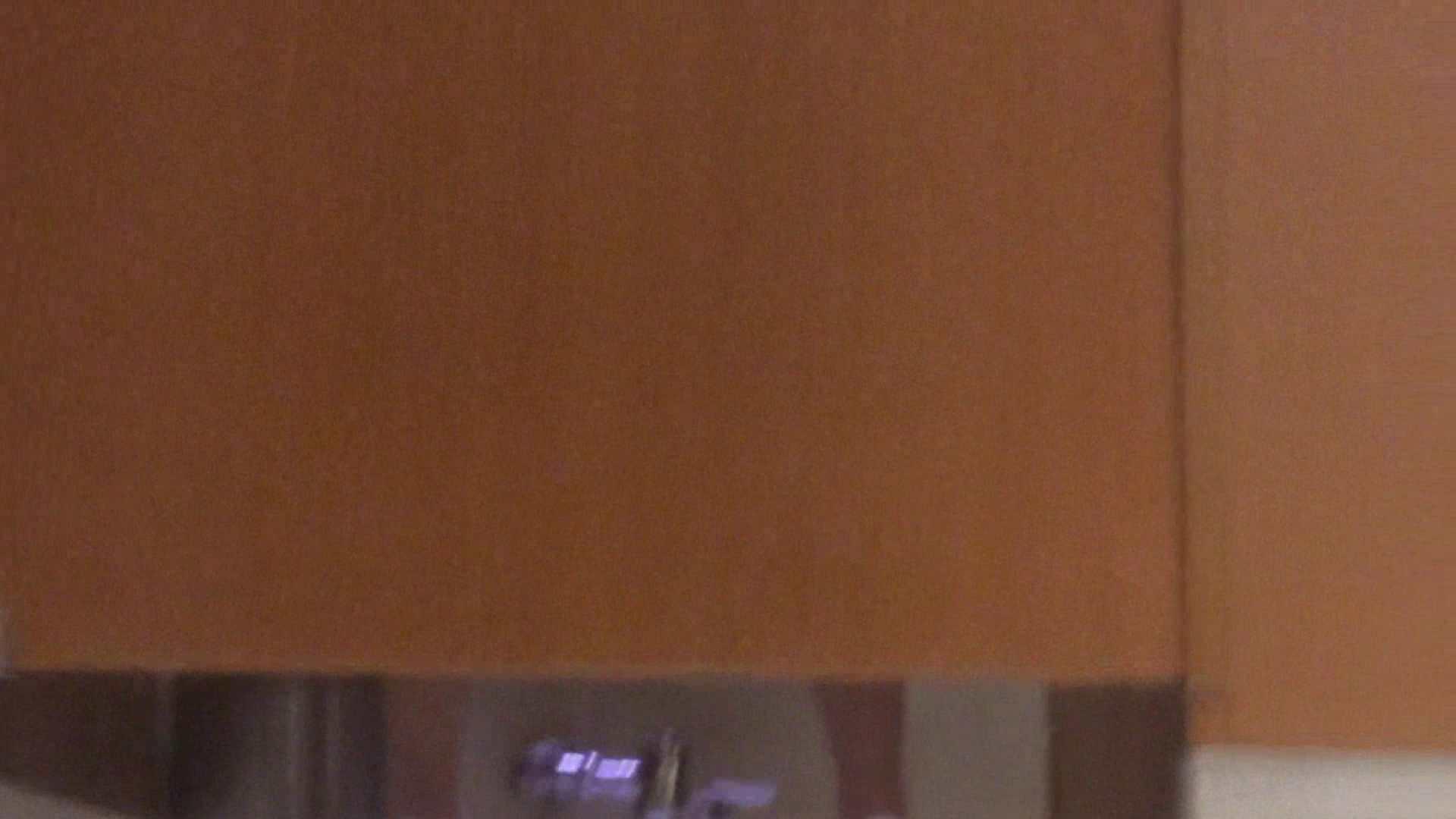 「噂」の国の厠観察日記2 Vol.10 人気シリーズ 盗撮動画紹介 85連発 83