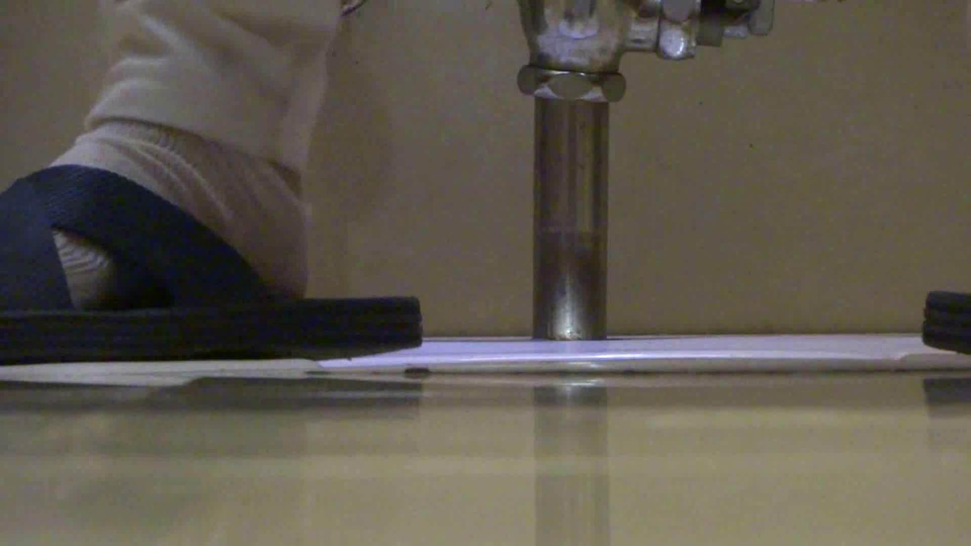 「噂」の国の厠観察日記2 Vol.15 OLのエロ生活 ぱこり動画紹介 75連発 53