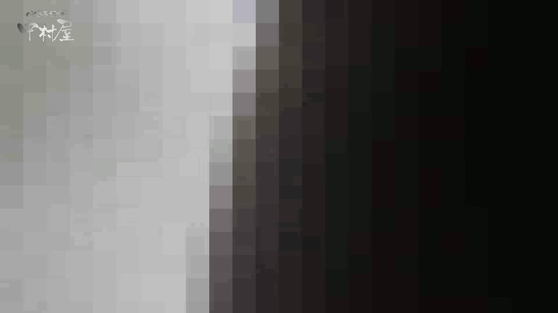 洗面所突入レポート!!vol.25 女子トイレ 濡れ場動画紹介 83連発 58