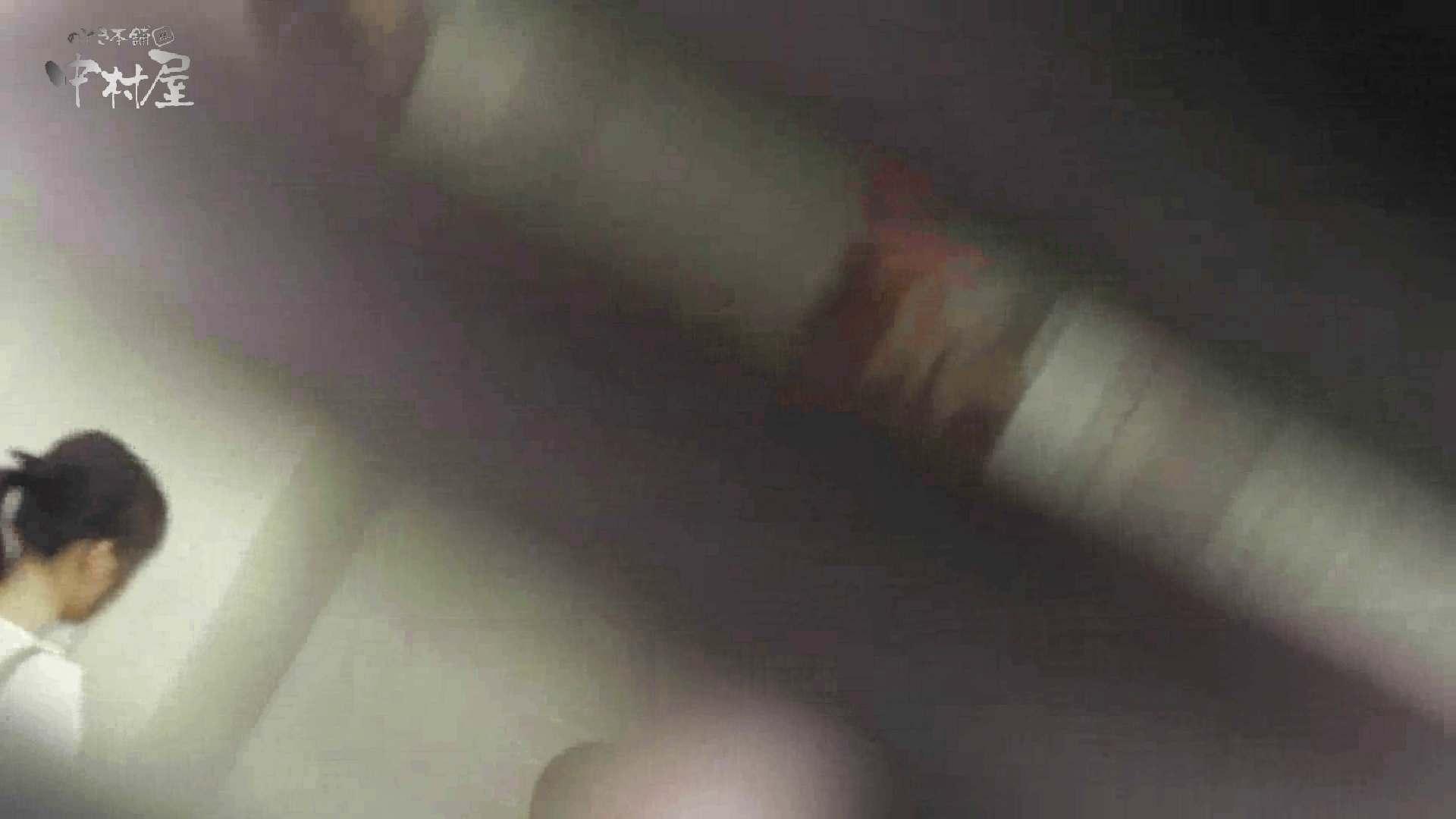 洗面所突入レポート!!vol.27 排泄 隠し撮りオマンコ動画紹介 50連発 48