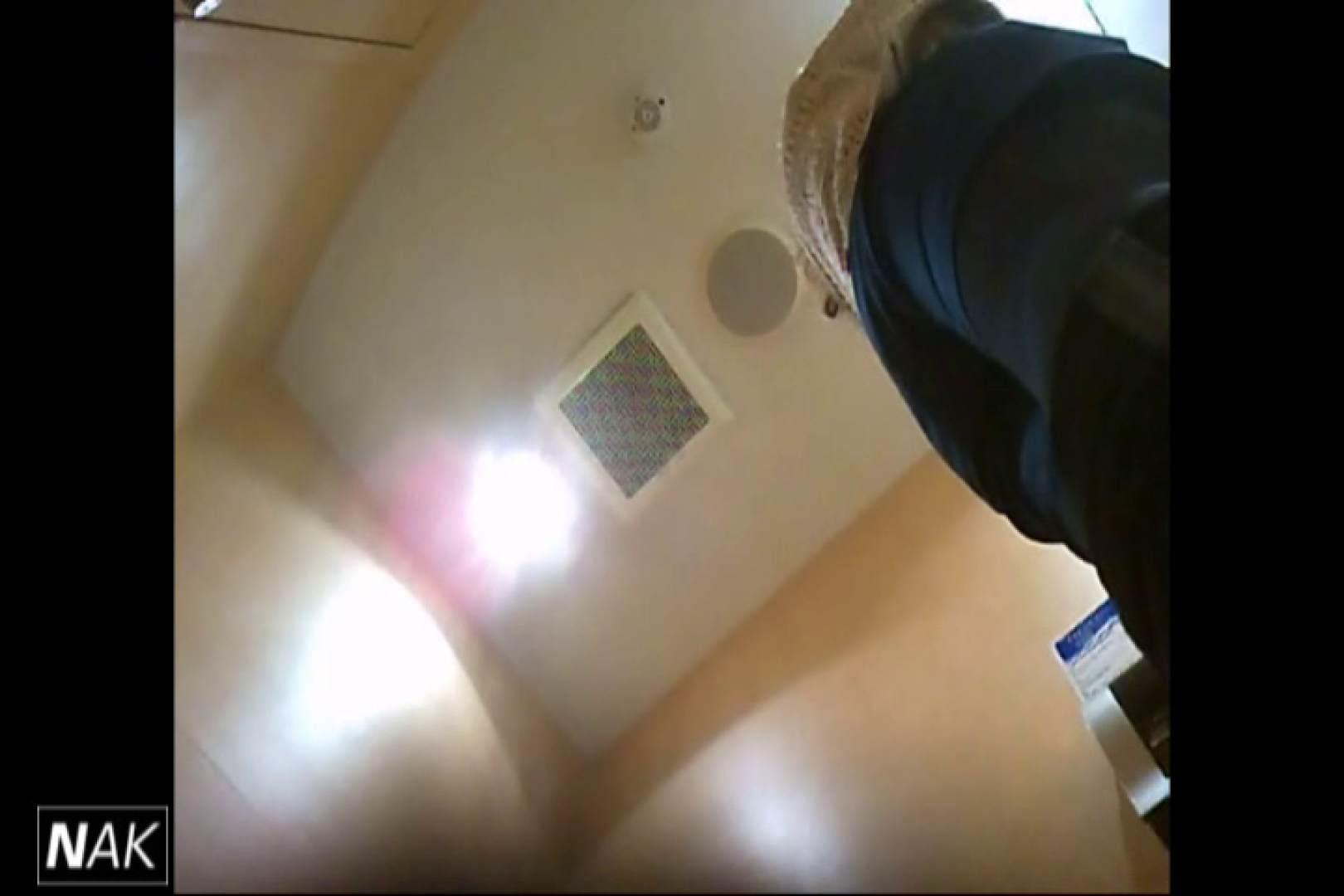 せん八さんの厠観察日記!2点監視カメラ 高画質5000K vol.14 OLのエロ生活 ぱこり動画紹介 33連発 2