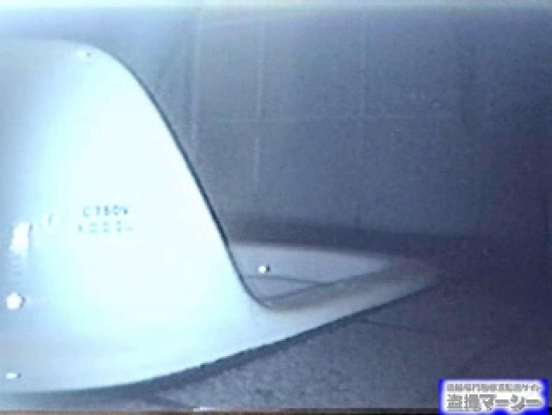 臨海公園和式接写映像! vol.01 OLのエロ生活 隠し撮りオマンコ動画紹介 99連発 78