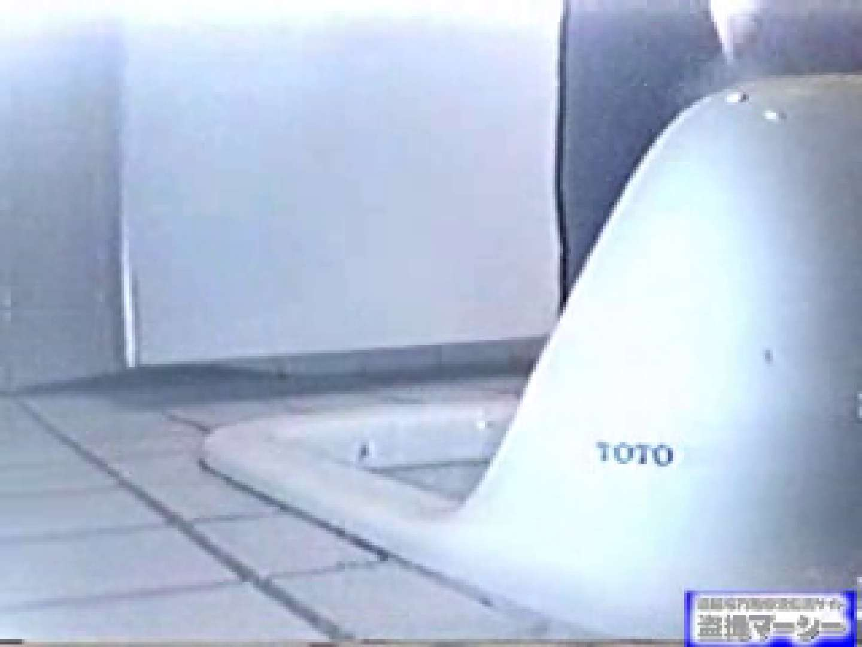 臨海公園和式接写映像! vol.01 OLのエロ生活 隠し撮りオマンコ動画紹介 99連発 90