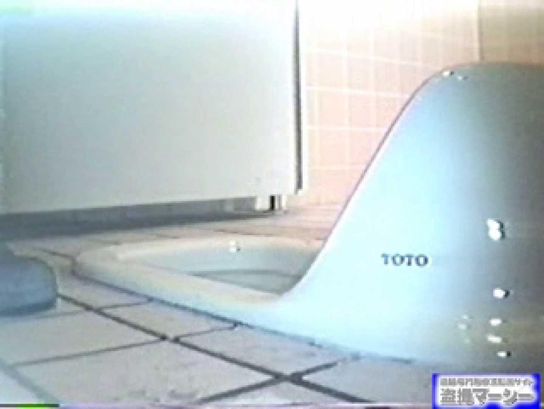 臨海公園和式接写映像! vol.01 OLのエロ生活 隠し撮りオマンコ動画紹介 99連発 94