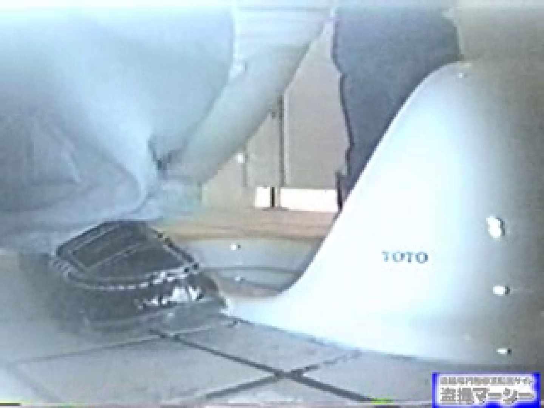 臨海公園和式接写映像! vol.01 OLのエロ生活 隠し撮りオマンコ動画紹介 99連発 98