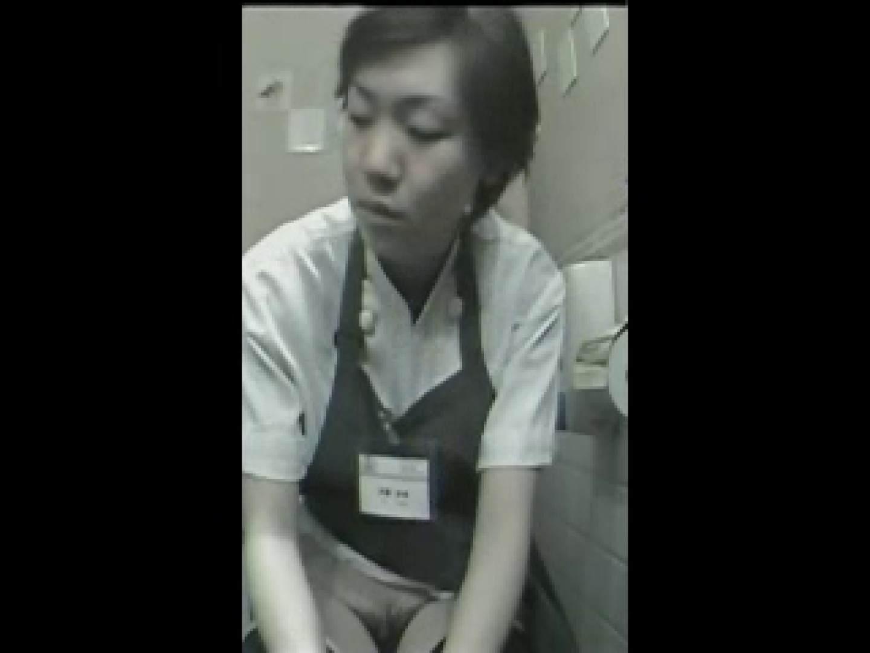 ハンバーガーショップ潜入厠! vol.02 OLのエロ生活 ぱこり動画紹介 91連発 27