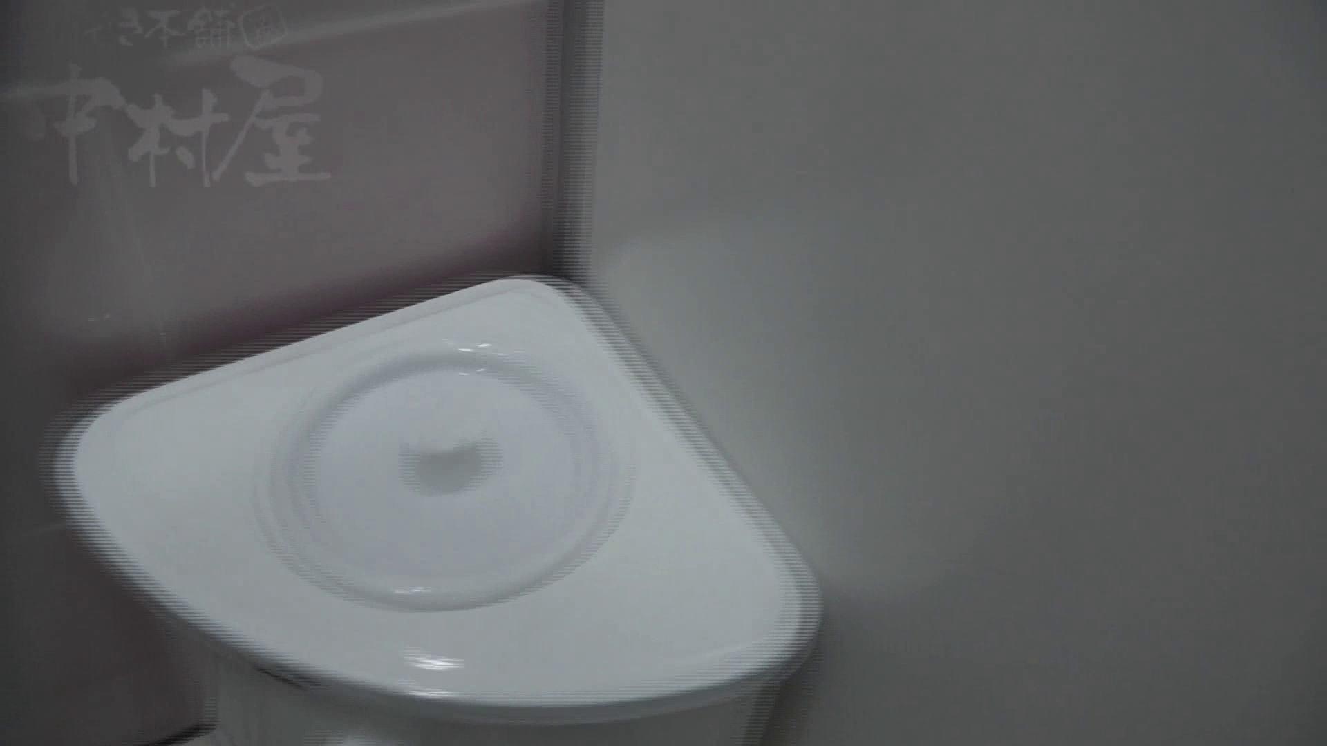 美しい日本の未来 No.17 番外編 ※※※閲覧注意※※※ 女子トイレ オメコ動画キャプチャ 64連発 45