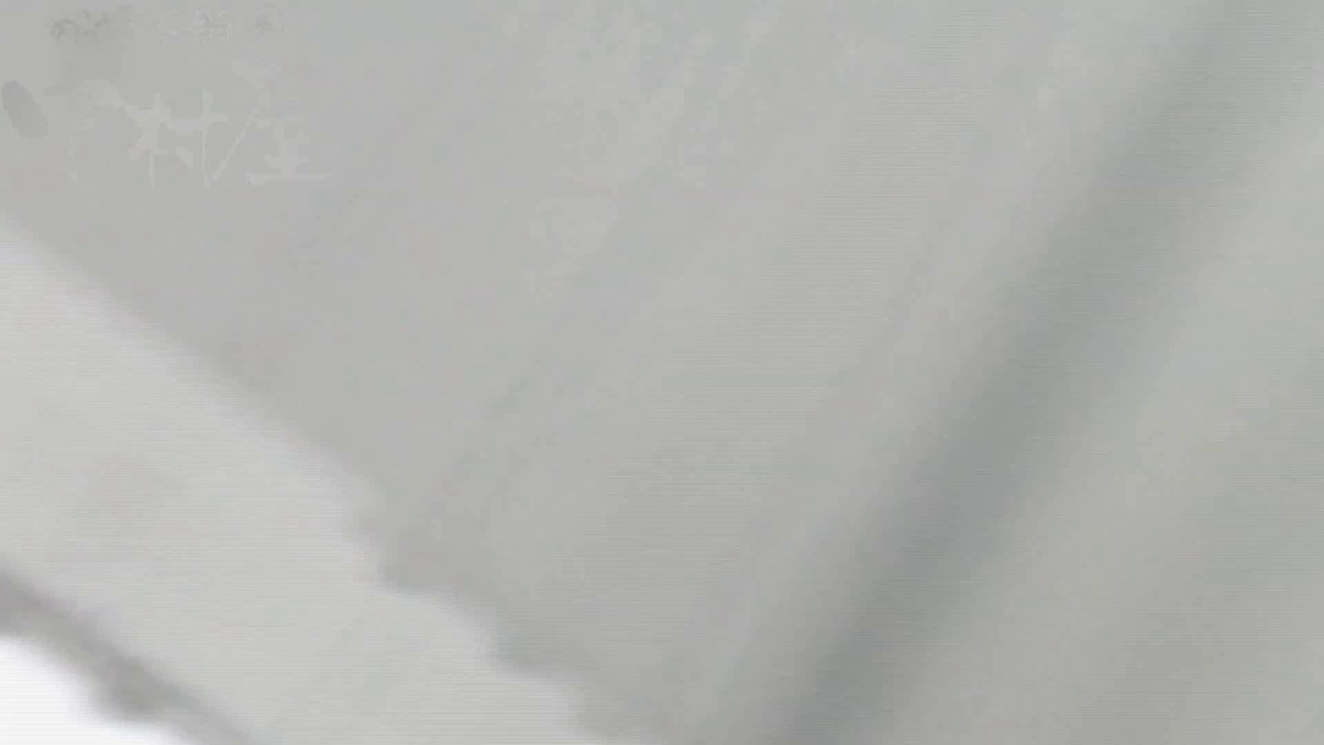 美しい日本の未来 No.29 豹柄サンダルはイ更●気味??? 卑猥   女子トイレ  111連発 64