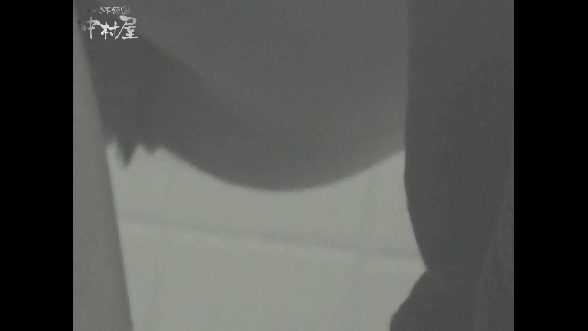 女子トイレ盗撮若い嬢編vol.13 厠 セックス画像 56連発 10